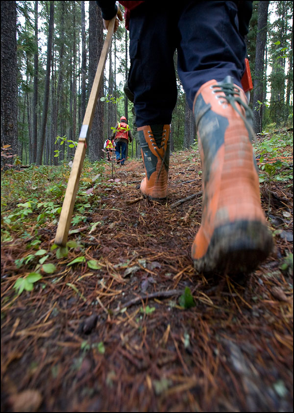 rj_nait_forestry_100909_04