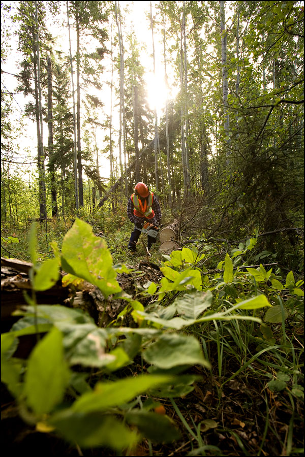 rj_nait_forestry_100909_13
