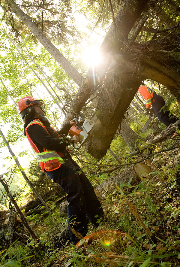 rj_nait_forestry_100909_15