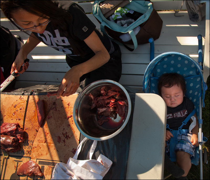 FORT CHIPEWYAN, ALTA.: SEPTEMBER, 13, 2013: Ten-month old Rayelle Marcel sleeps while his mother Raylene Gibot cuts elk meat during a dry meat making workshop in Fort Chipewyan, Alta. on September 13, 2013.  The workshop was put on by the ACFN to teach residents aboriginal traditions.  Established in 1788, Fort Chipewyan is the oldest settlement in Alberta.  (Ryan Jackson / Edmonton Journal)