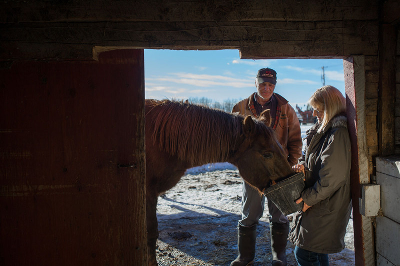 Glenn and Patricia Mattson pose for a photo with their quarter horse Missy on their farm near Mayerthorpe, Alta.  on January 22, 2015. They say coyotes haven't been much of a problem for them in the 40-years they have raised horses and cattle on their farm with the exception of a cat that was attacked once. (Ryan Jackson/Edmonton Journal)