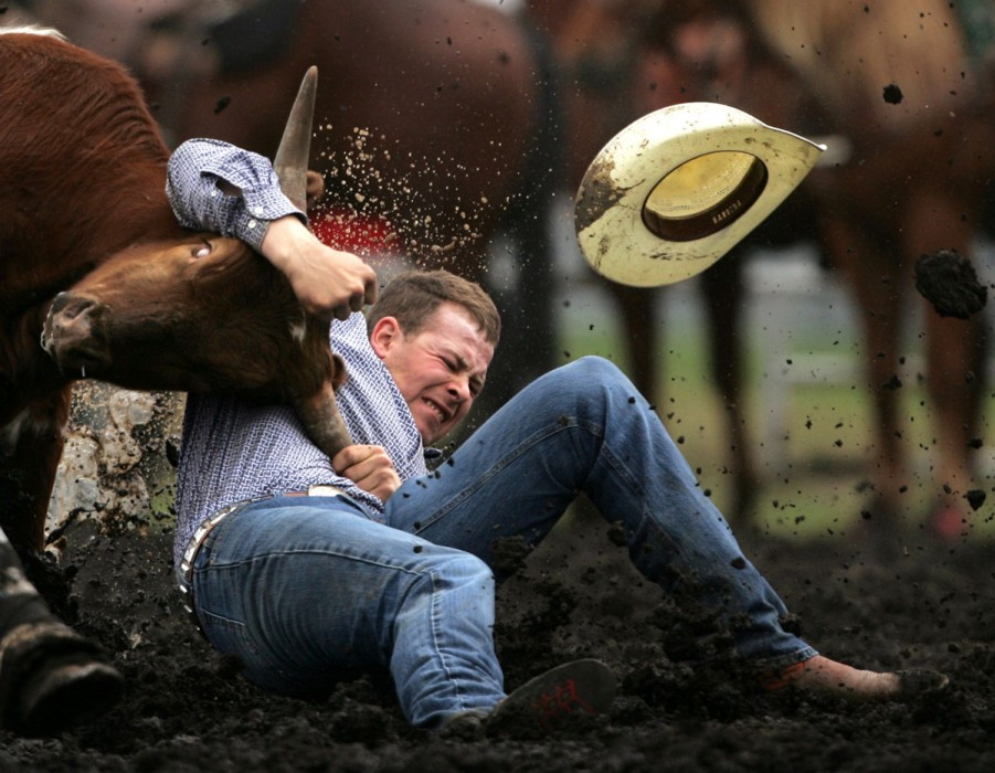 Kevin Taks from Crossfield, AB takes down a calf in 5.5 seconds at  the Rainmaker Rodeo in St. Albert. 2006.