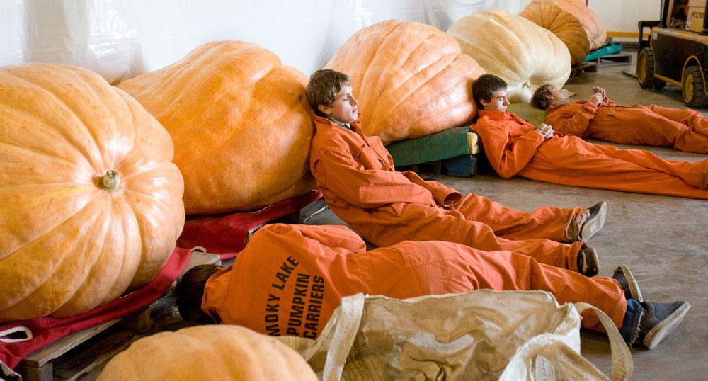 All pumpkin'd out