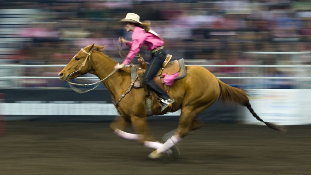 Sierra Stoney from Dewinton, AB during the ladies barrel racing event at the Canadian Finals Rodeo at Rexall Place in Edmonton, AB on November 6, 2008.