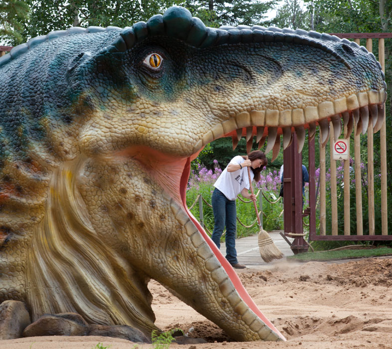 Melissa Brown a worker with Jurassic Forest sweeps a path at the park featuring 40 animatronic dinosaurs near Gibbons, Alta. on July 28, 2010.